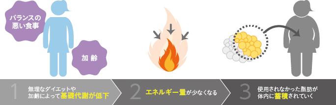 ベイザー脂肪吸引:脂肪が燃焼されにくい状態
