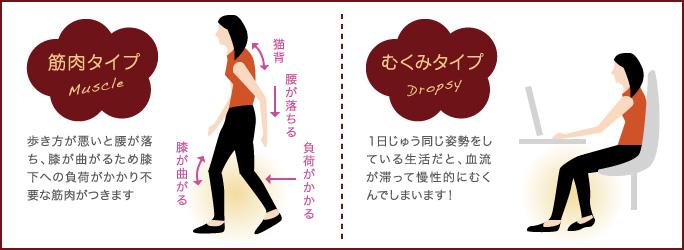 ベイザー脂肪吸引:【タイプ別】ふくらはぎが太くなる原因